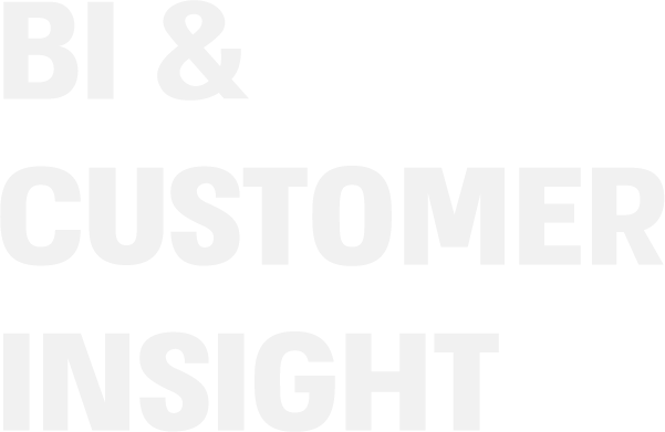 BI & CUSTOMER INSIGHT